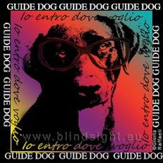 Manifesto Guide Dog di Blindsight Project