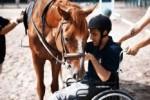 Gioco e terapia con il cavallo e il cane